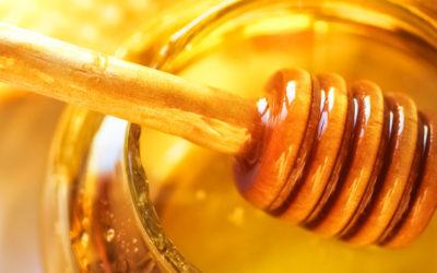 Honig - das flüssige Gold